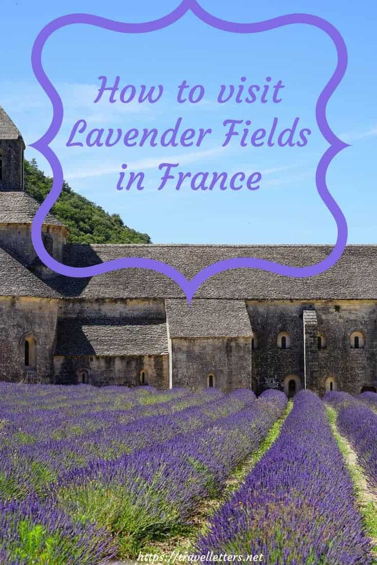How to visit lavender fields on Valensole Plateau in Provence, France and what to expect