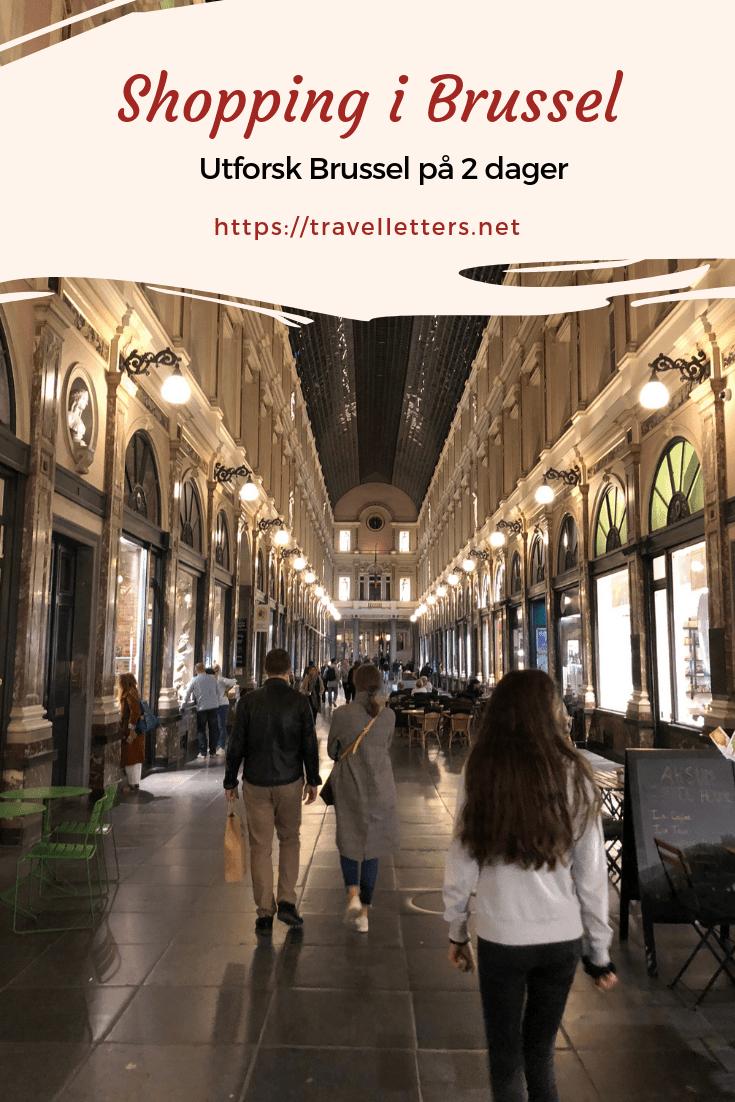 Explore Brussels' shopping life, backstreets, culture and history (Norwegian blog post) Utforsk Brussel på en helg. Storbyen har mye å tilby innen mat og, drikke, aktiviteter, kultur og arkitektur, og en blanding av det unge, hippe og det gamle snobbete atmosfære. #storby #brussel #europa #storbyferie #storbyhelg #helgetur